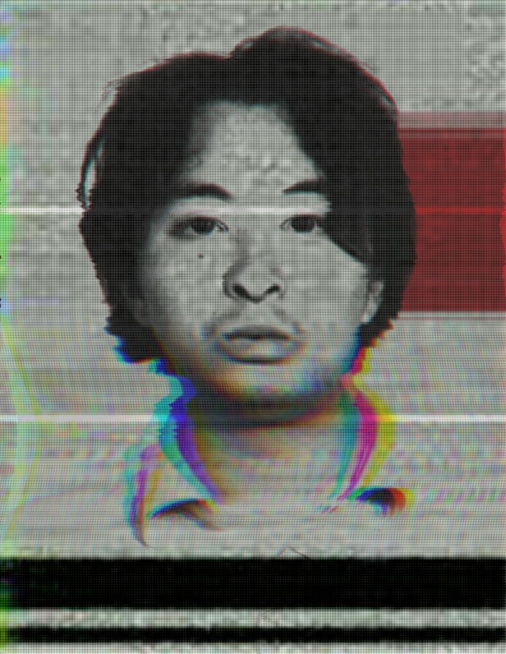 Tsutomo Miyazaki; The Otaku Killer