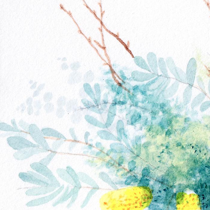Flowers by Amy Oreo | Illustrator + Designer