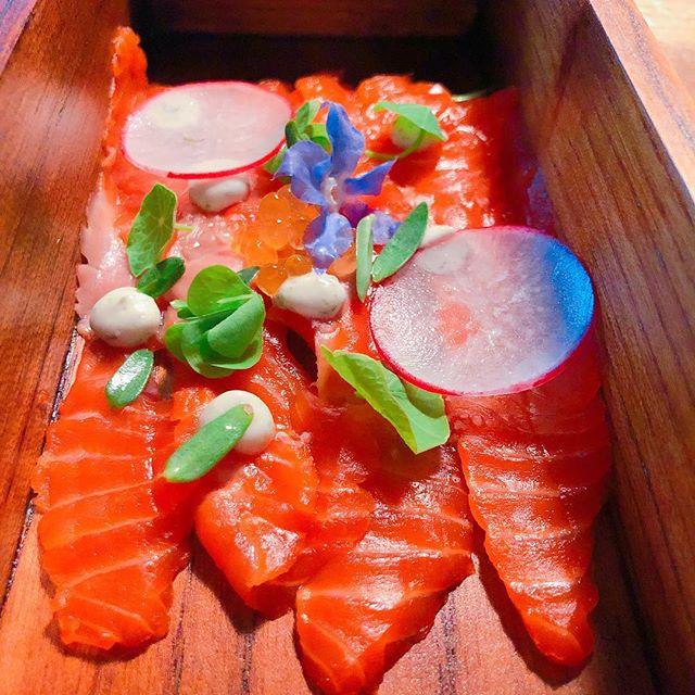 Nimmo Bay // Salmon Sashimi 🍣