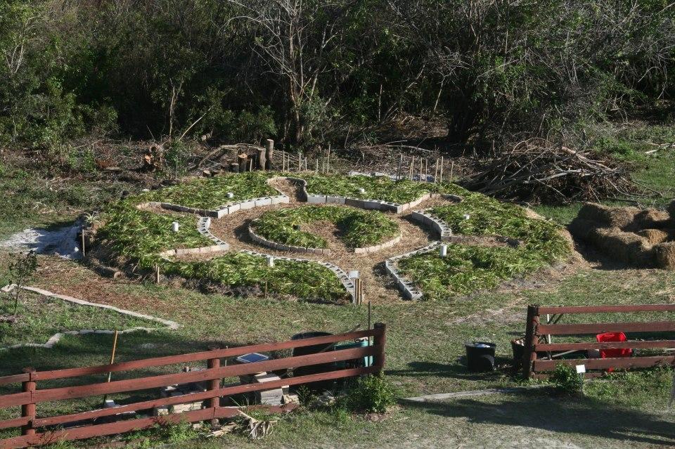 mandala-garden.jpg