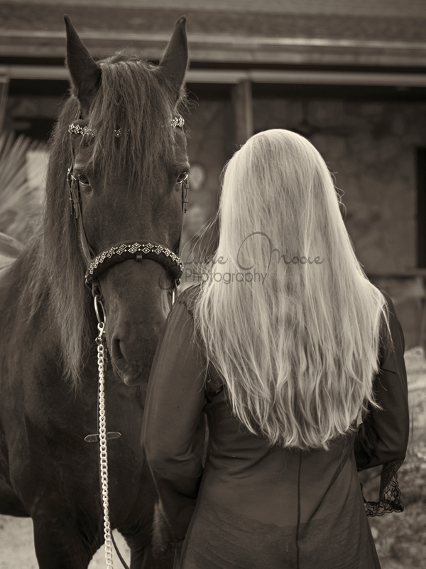 Glamour-horse-photography-austinTX-25.jpg