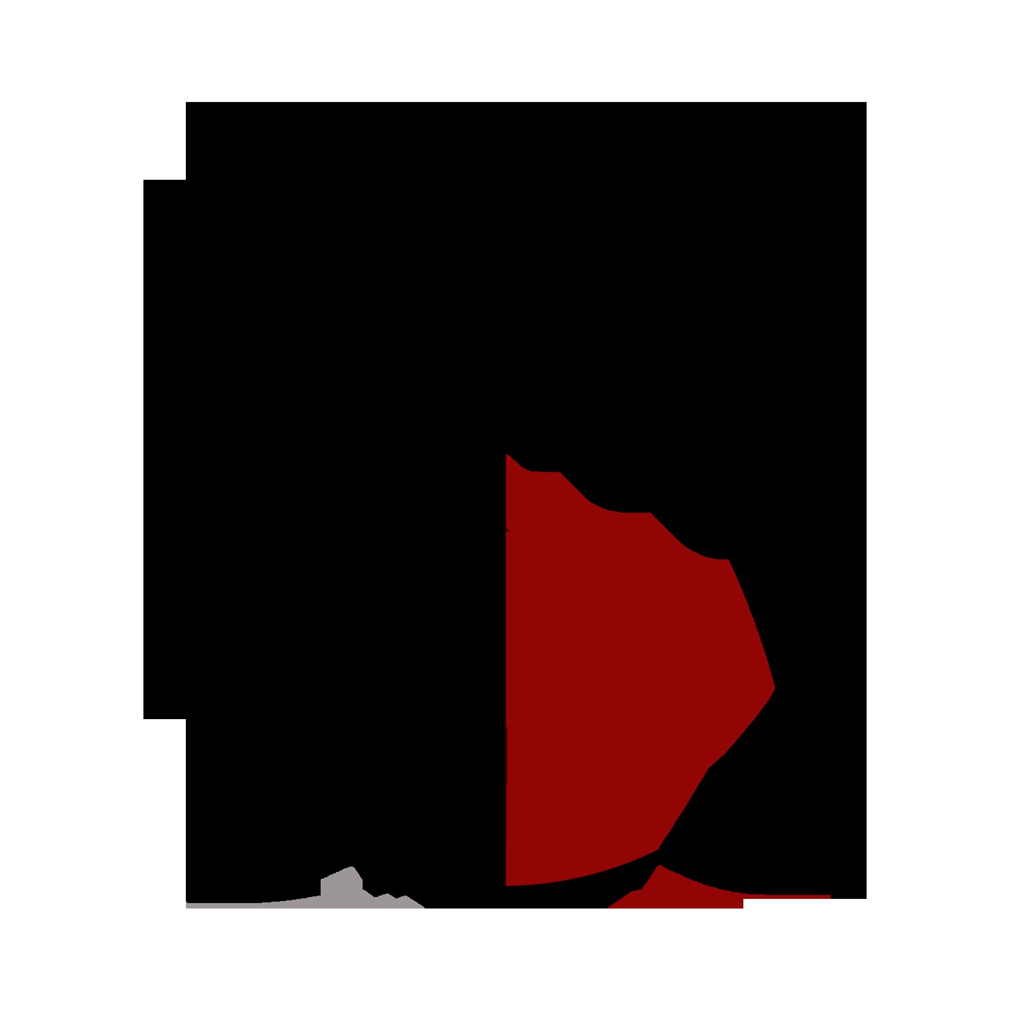 say grace logo.png