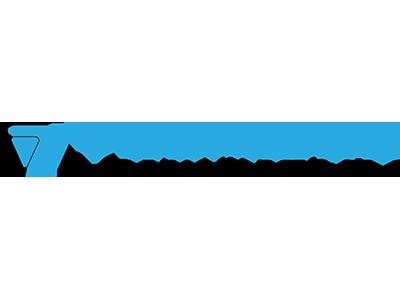 vesalius-logo.png