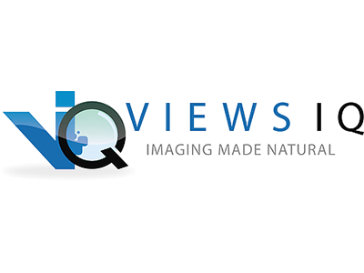 views-iq-logo.png