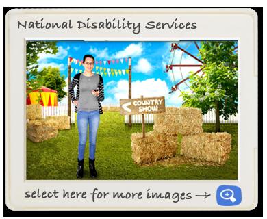 National Dissability Service screen shot