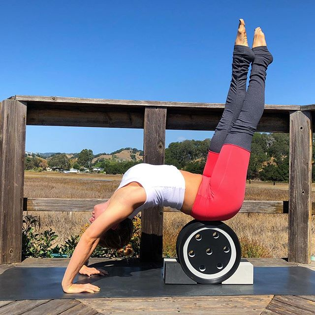 Last 👏🏼 day 👏🏼! Can we just take a second & look at @bethanysmithyoga hollow back for #backbendwithlove 's last day - I mean DAMN girl! #goals I typically use Paul Wall for hollowbacks but thought I'd shake it up by using a wheel instead... both are great 👍🏼 Thank you so much for playing with us over the last 10 days! Special thanks to my incredibly inspiring cohosts. Xoxoxo ⠀⠀⠀⠀⠀⠀⠀⠀⠀⠀⠀⠀ Hosts: @erikafischeryoga @ikadewiyoga @kellymarie_yoga @bethanysmithyoga ⠀⠀⠀⠀⠀⠀⠀⠀⠀⠀⠀⠀ Sponsors: @aloyoga @alo.moves ⠀⠀⠀⠀⠀⠀⠀⠀⠀⠀⠀⠀ To enter: 1. Repost flyer and tag some friends to join! 2. Tag all hosts and sponsors in all posts. 3. Post daily and include the hashtag #backbendwithlove ❤️ ⠀⠀⠀⠀⠀⠀⠀⠀⠀⠀⠀⠀ Pose Line up: Day 1:  Flex the shoulder Day 2:  Extend the shoulder Day 3:  Hip Flexor and Quad stretch Day 4:  Drills to strengthen the back Day 5:  Locust pose Day 6:  Bow pose Day 7:  Bridge pose Day 8:  Camel Day 9:  Wheel Day 10: Hollowback ⠀⠀⠀⠀⠀⠀⠀⠀⠀⠀⠀⠀ ⠀⠀⠀⠀⠀⠀⠀⠀⠀⠀⠀⠀ ⠀⠀⠀⠀⠀⠀⠀⠀⠀⠀⠀⠀ ⠀⠀⠀⠀⠀⠀⠀⠀⠀⠀⠀⠀ ⠀⠀⠀⠀⠀⠀⠀⠀⠀⠀⠀⠀ ⠀⠀⠀⠀⠀⠀⠀⠀⠀⠀⠀⠀ ⠀⠀⠀⠀⠀⠀⠀⠀⠀⠀⠀⠀ ⠀⠀⠀⠀⠀⠀⠀⠀⠀⠀⠀⠀ #backbends #backbending #hollowback #yogaislife #yogainspo #heartopener #heathyspine #fityogi #fitmom #yogamama #fitmomsofinstagram #aloyoga #beagoddess #yogaforbeginners #yogaforall #yogainstructor #yogainstagram #myyogajourney #myyogapractice #soberyogi #soberaf #bayareayoga #strongmama #strongwomenrock #hollowbackhandstand #yogawheel