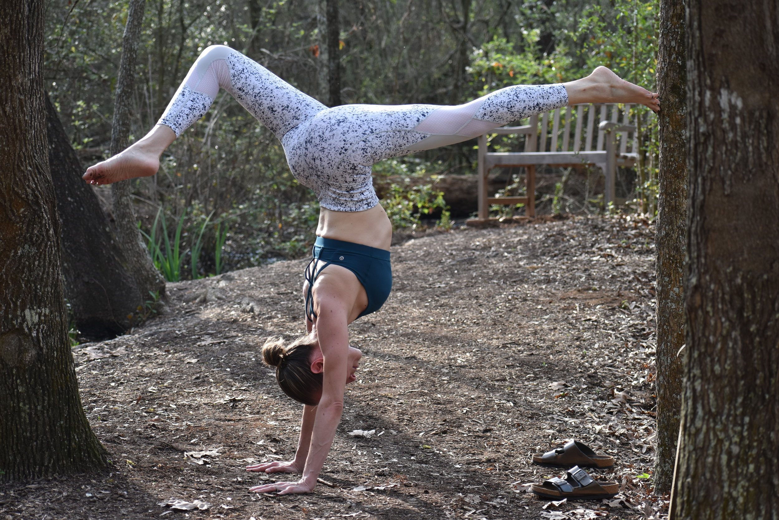 headstand tree backleg bet.jpg