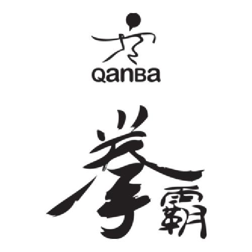 Qanba_500.jpg