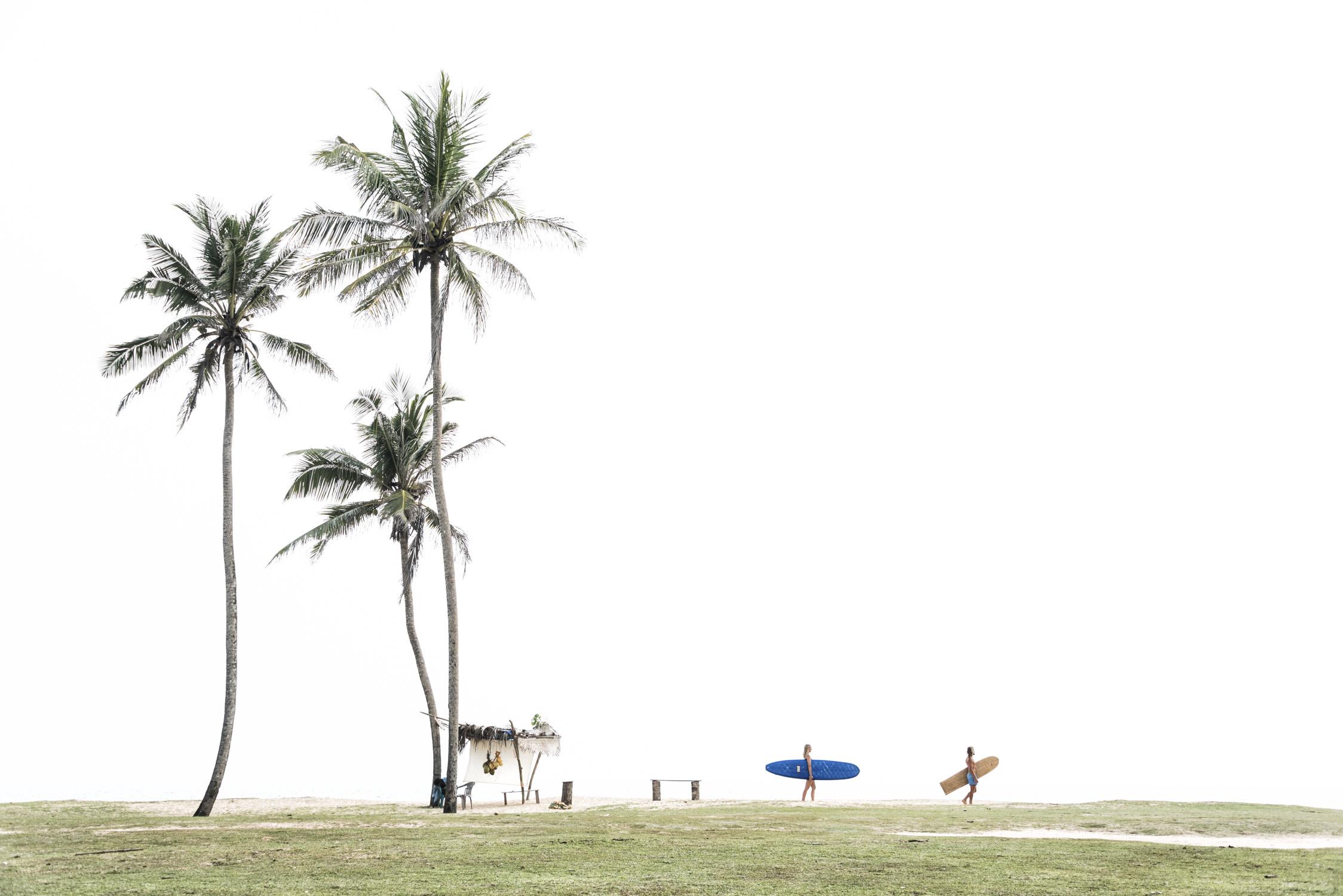 Sunshine Stories / Ceylon Sliders   - 2017