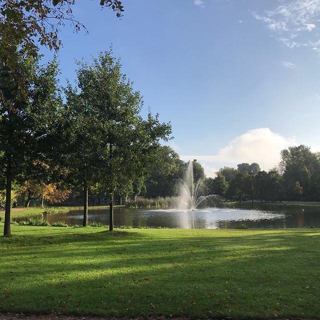 #goodmorningamsterdam #vondelpark #autumn🍁