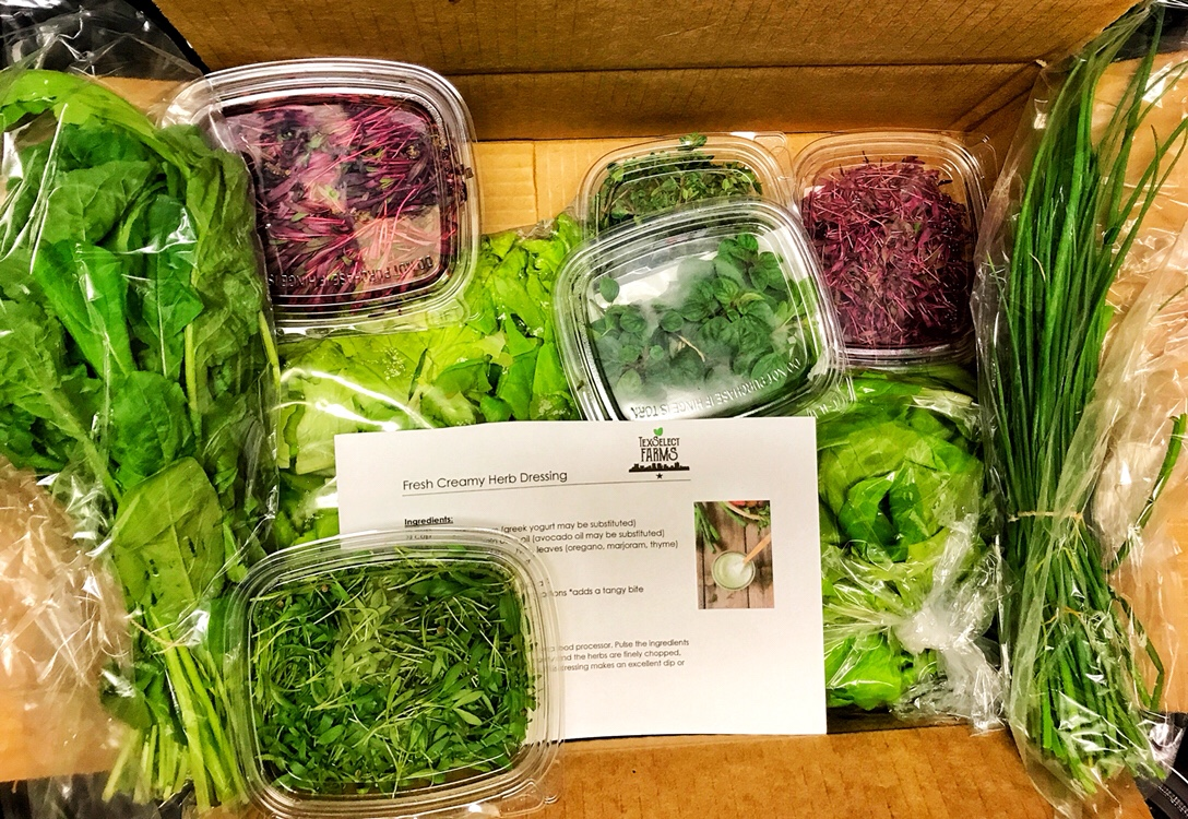 One of our first Weekly Harvest Boxes