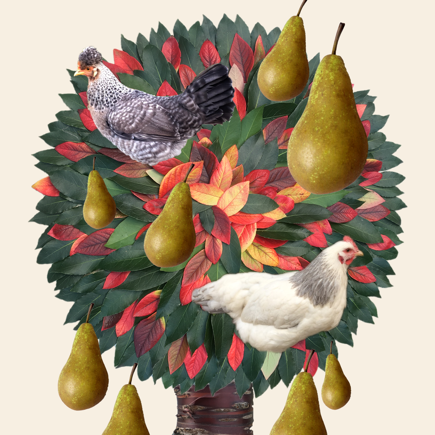 Christmas cards 2017-18