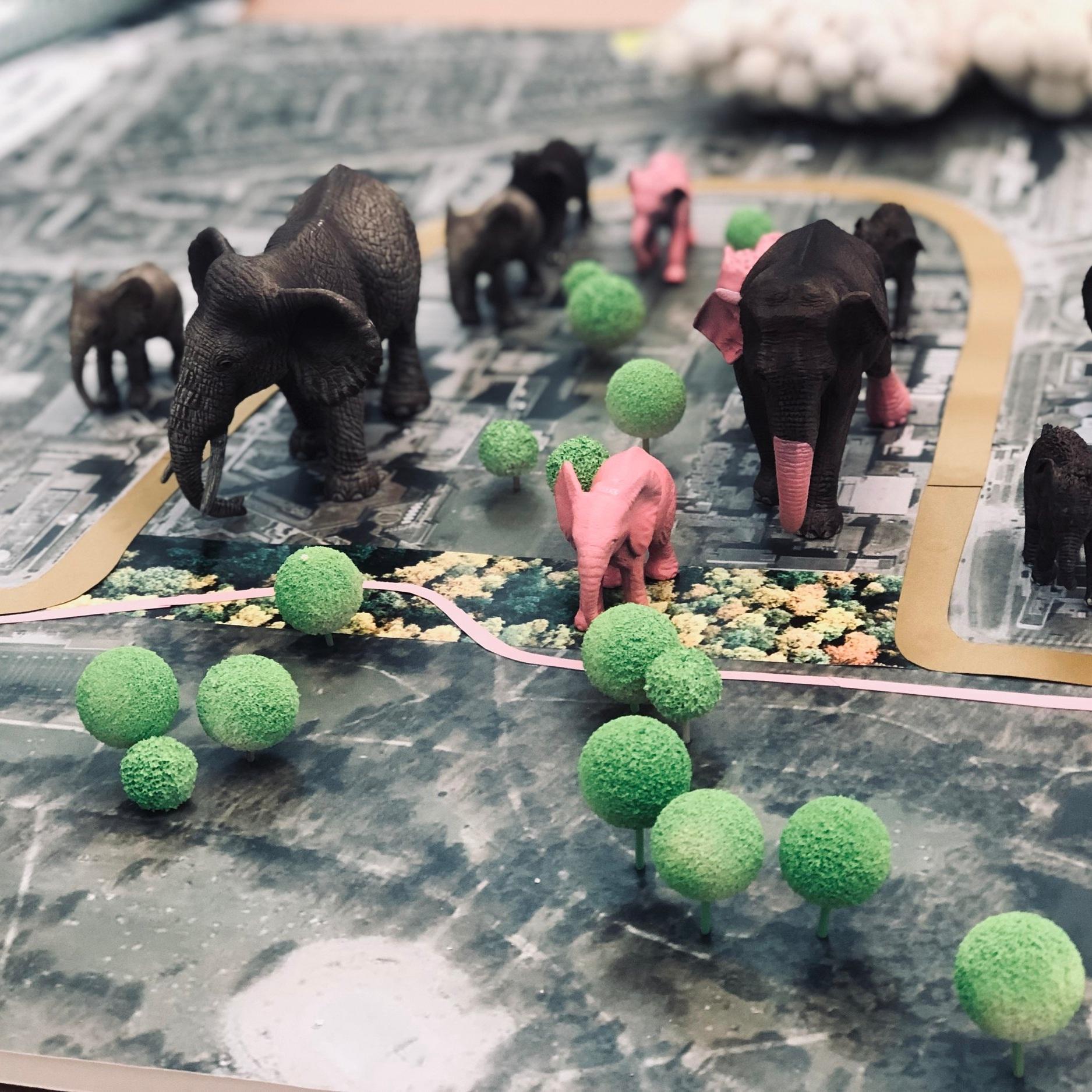 The Elephants!.jpg