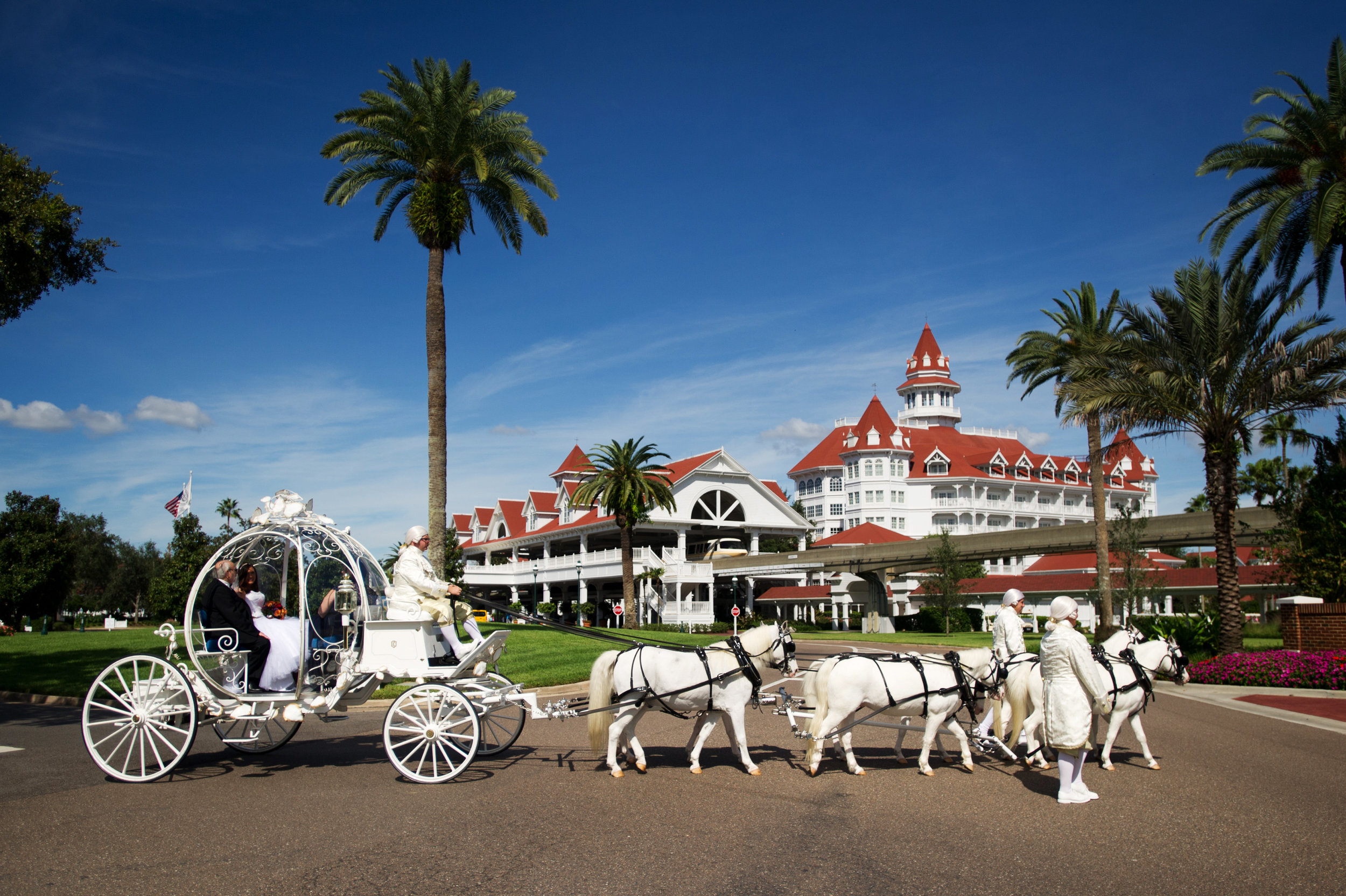 Disney Wedding Photographer - Wedding Planning inspiration