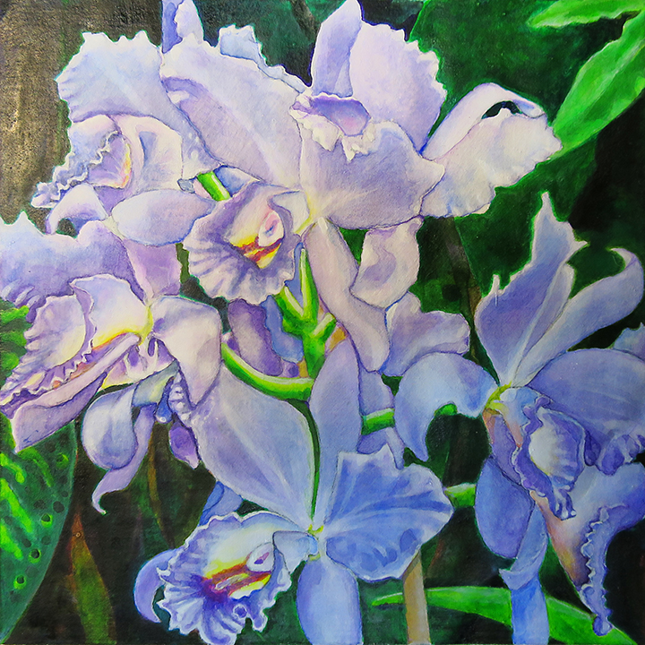 Orchid 5,Art by Getch
