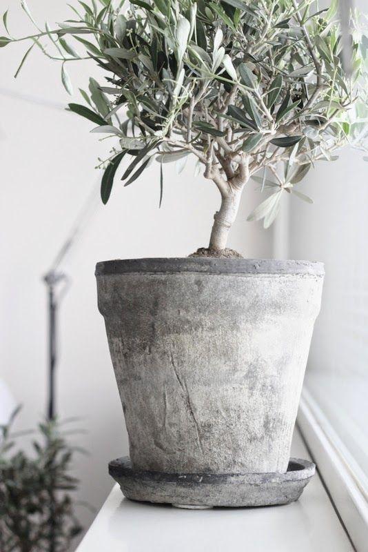 """""""my luxury linen"""", scandinavian bedding basics, svenska sängkläder, Why you should keep indoor plants in your bedroom"""
