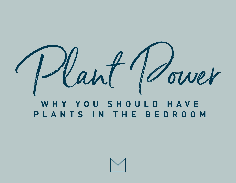 My Luxury Linen Plant Power