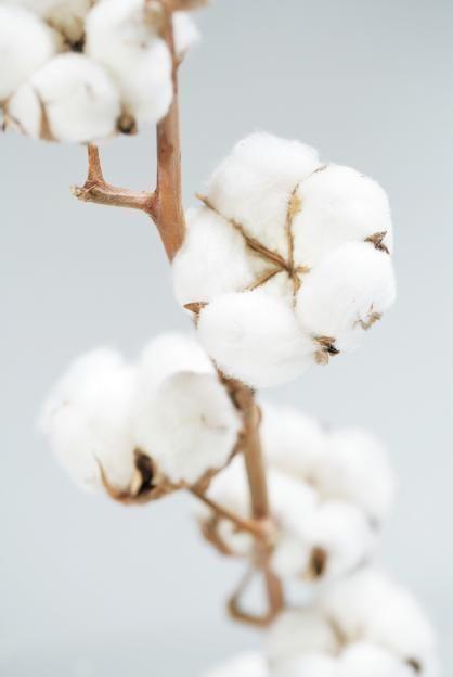 Cotton Sateen Flower My Luxury Linen