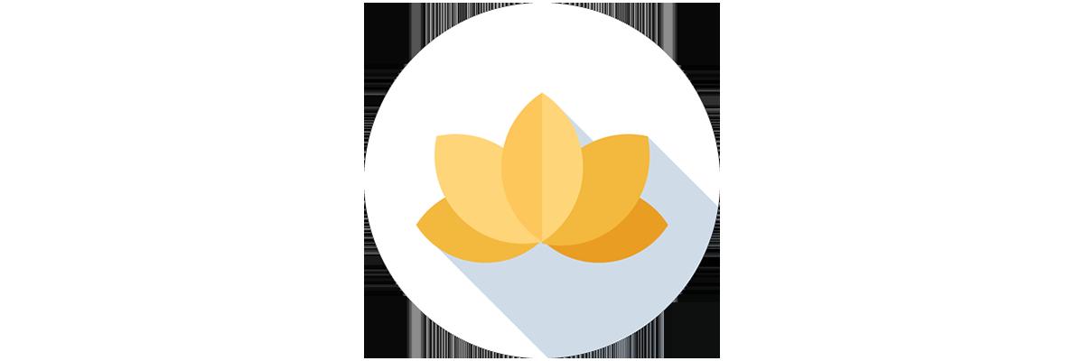 The Yoga Barre Icon, Greystones Co. Wicklow