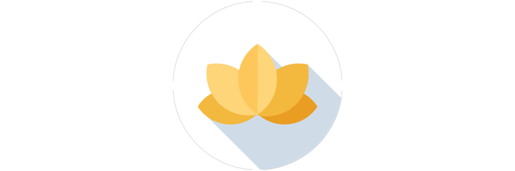 The Yoga Barre Greystones Icon