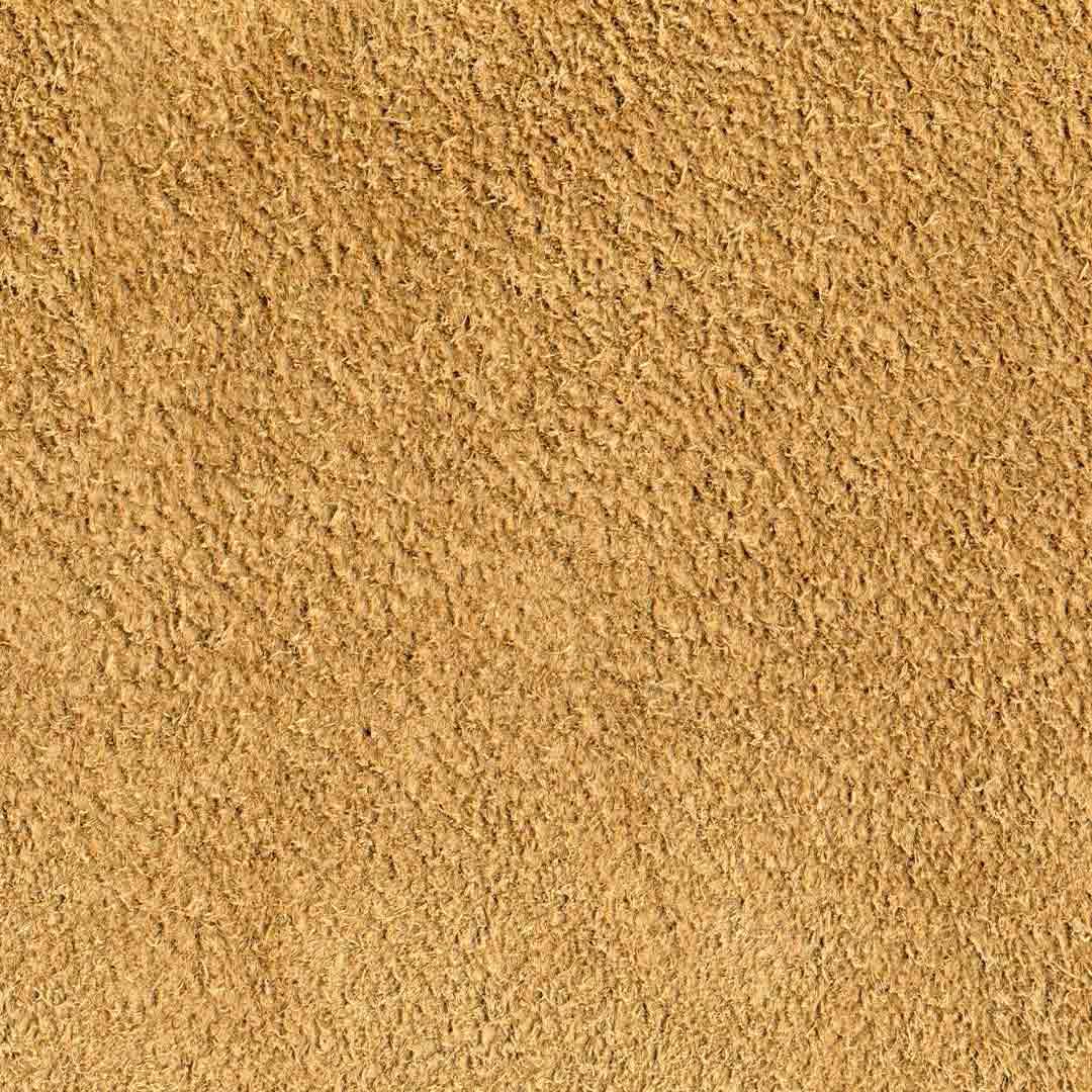 hairy-wheat.jpg