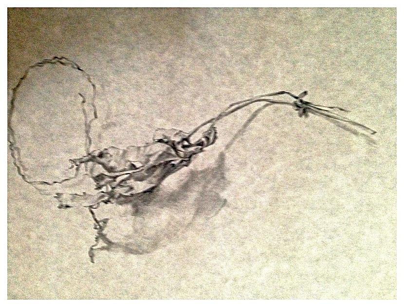 Fallen Leaf drawing