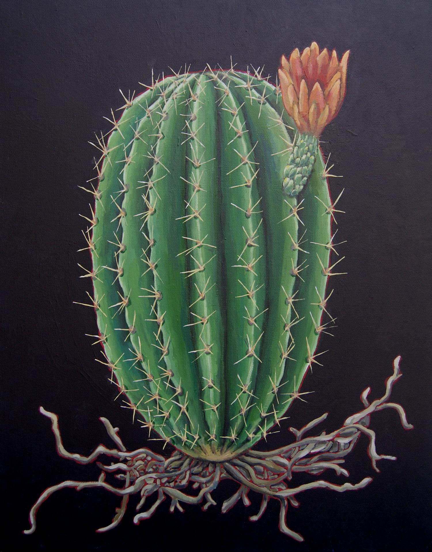 cactus bloom painting.jpg