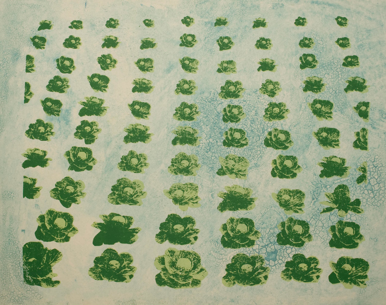 34e)cabbages print.jpg