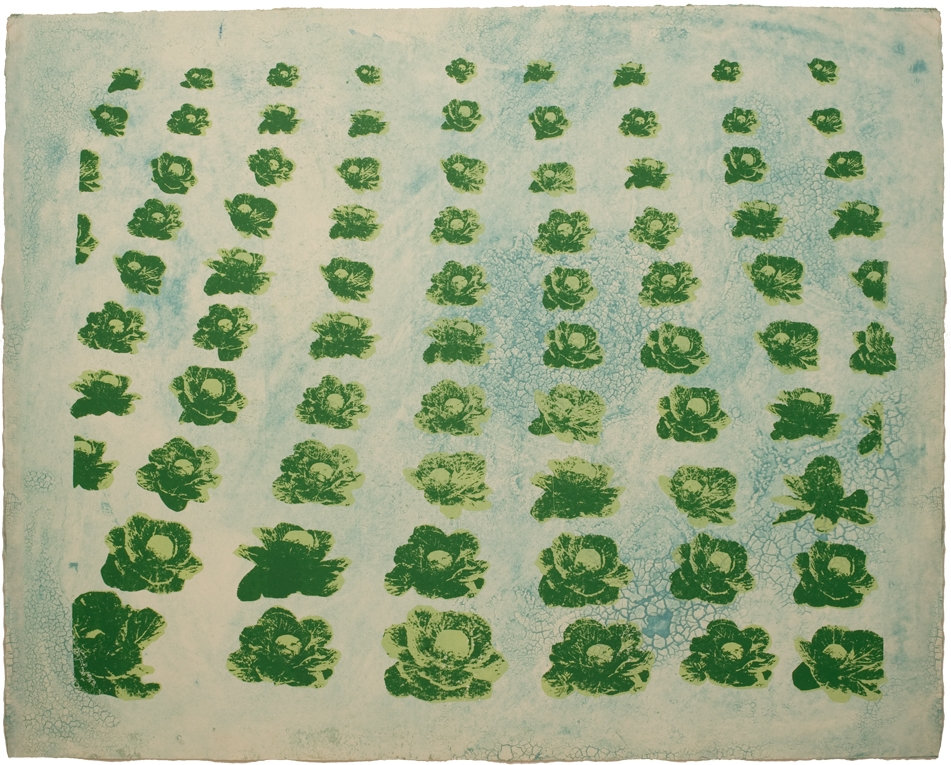 Cabbages - screen print and collagraph