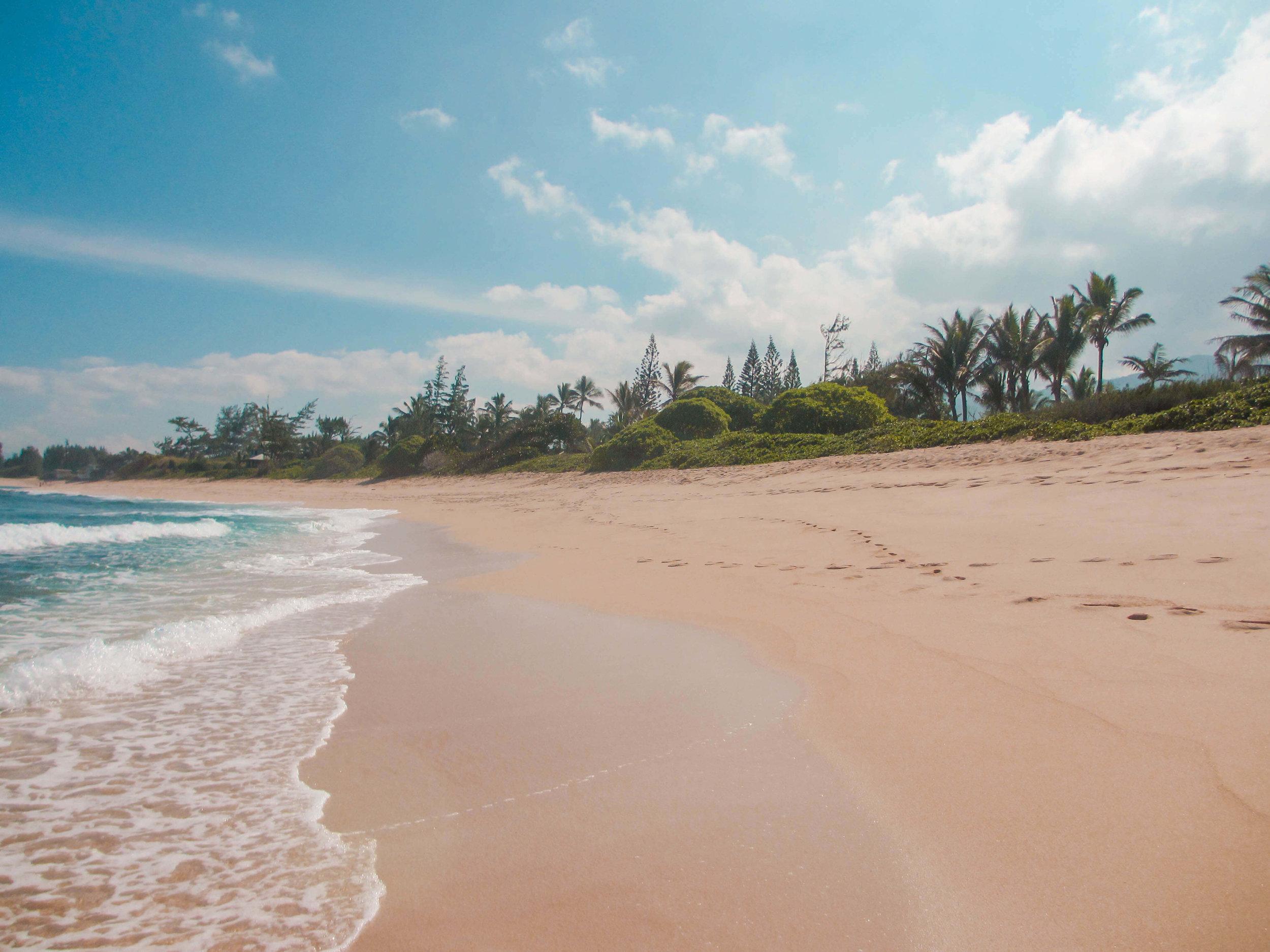Beach Oahu Hawaii