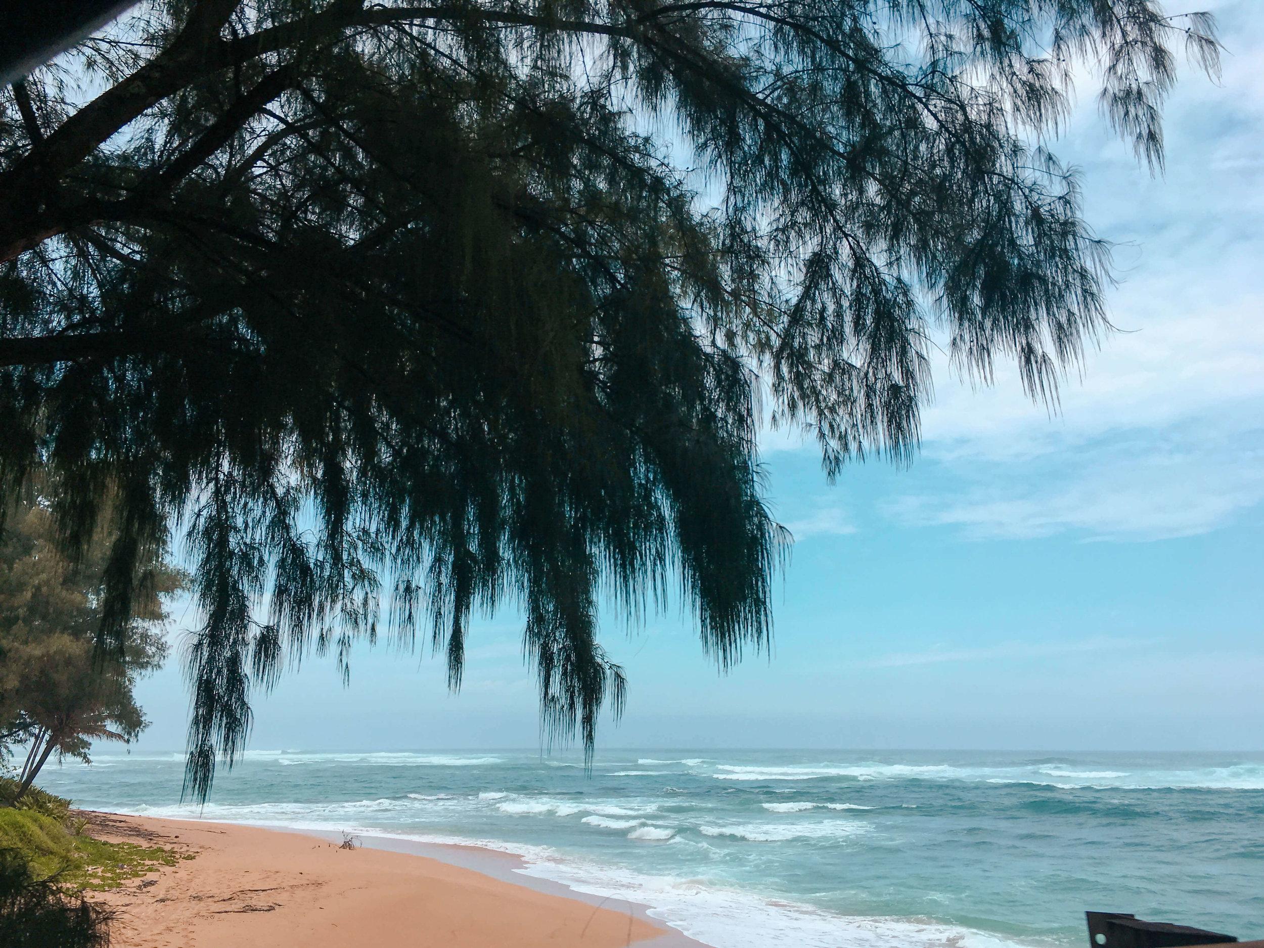 Hawaii Oahu Pipeline Beach