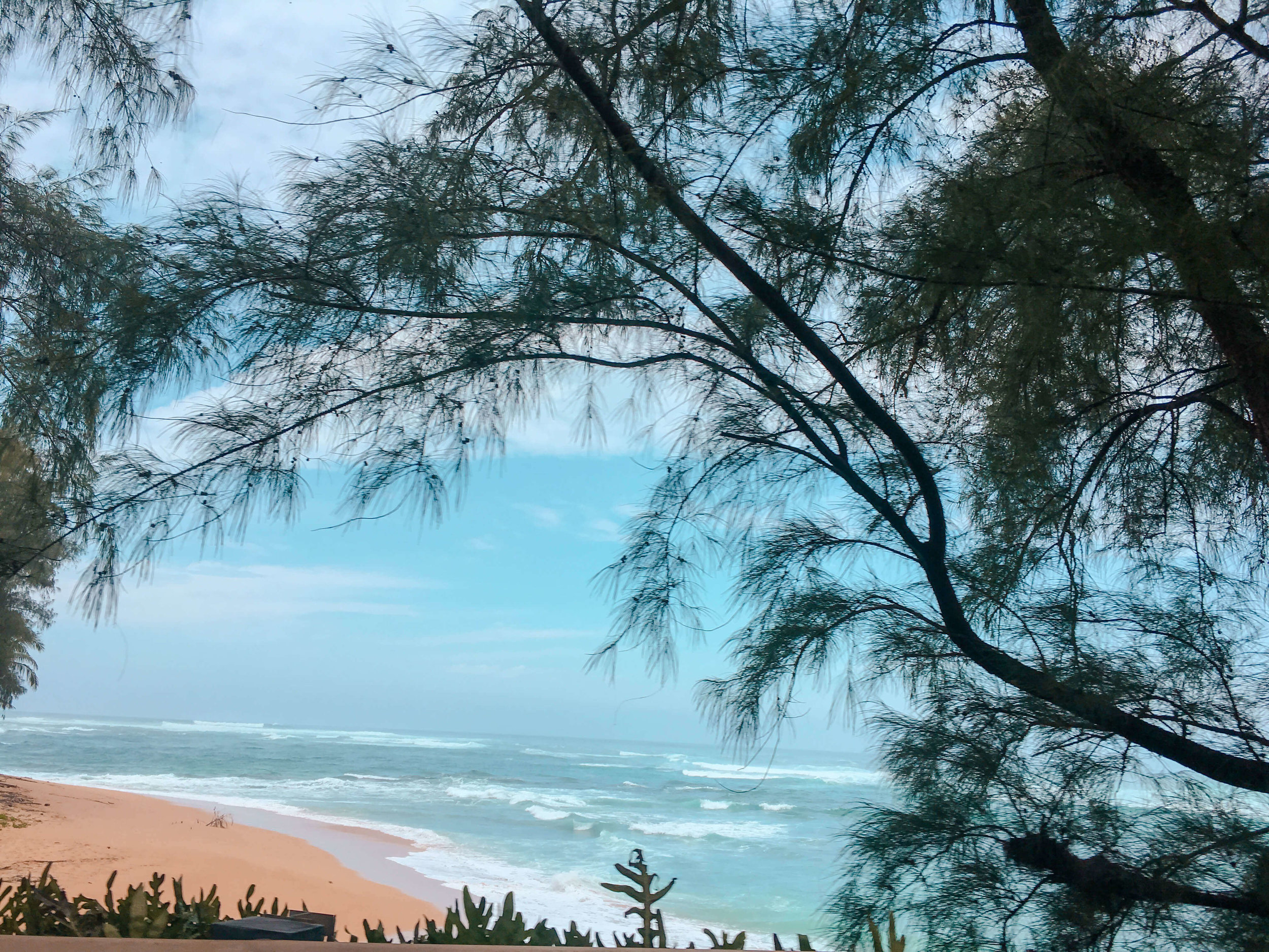 Oahu Hawaii Pipeline Beach