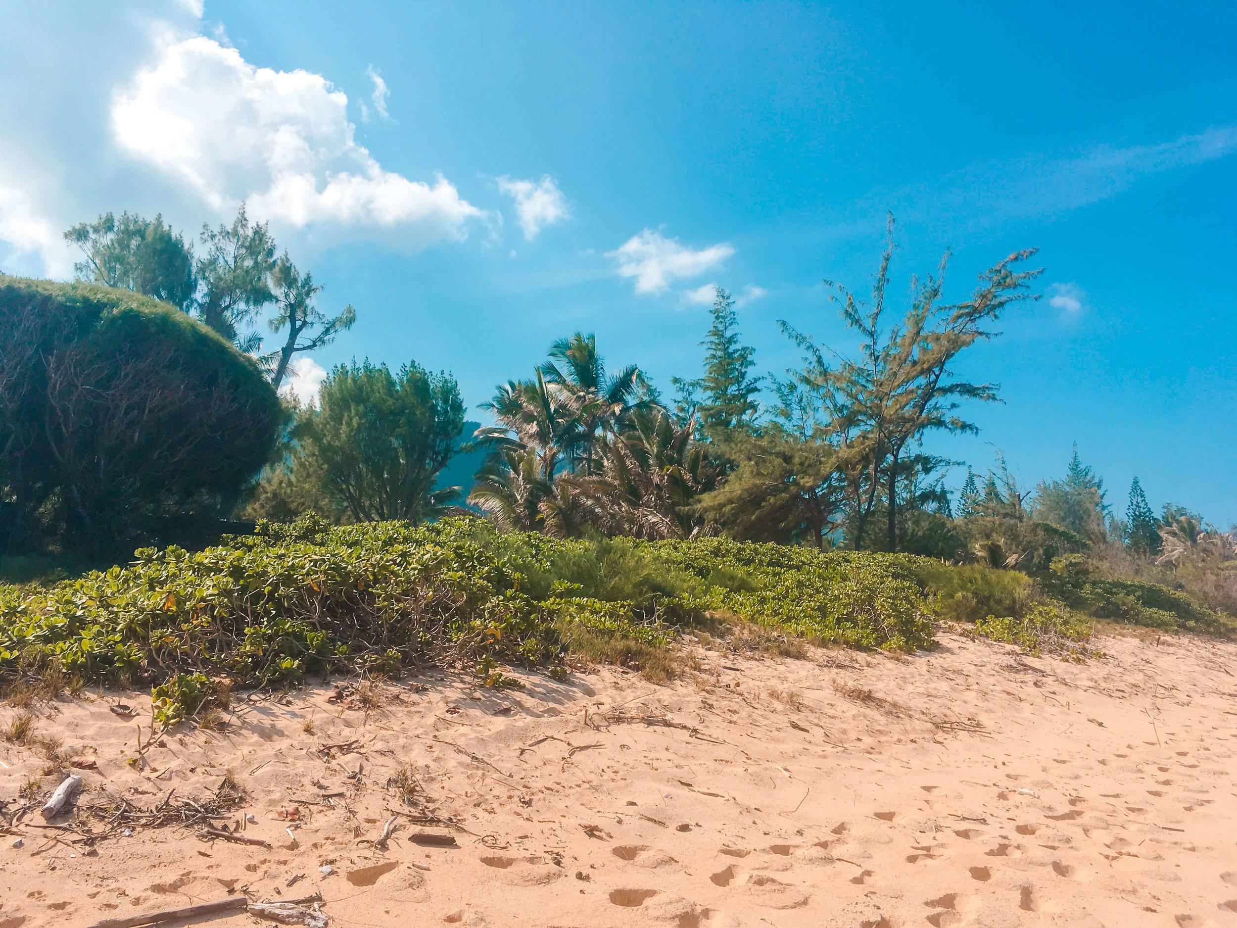 Mokuleia Beach Oahu Hawaii