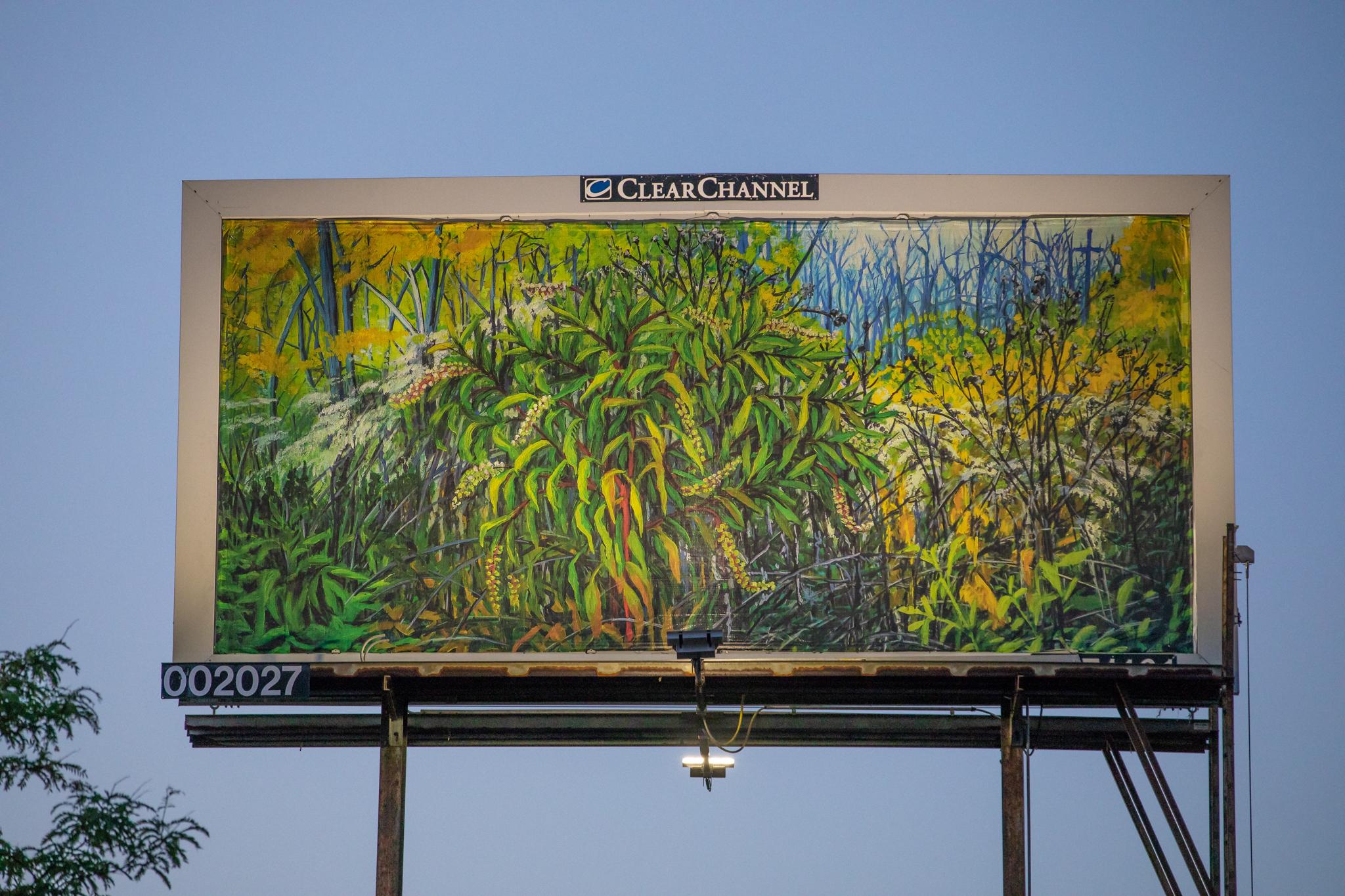 Billboard near 101st and Western, Chicago