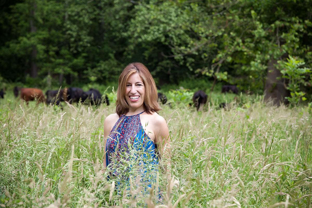 me field cows.jpg