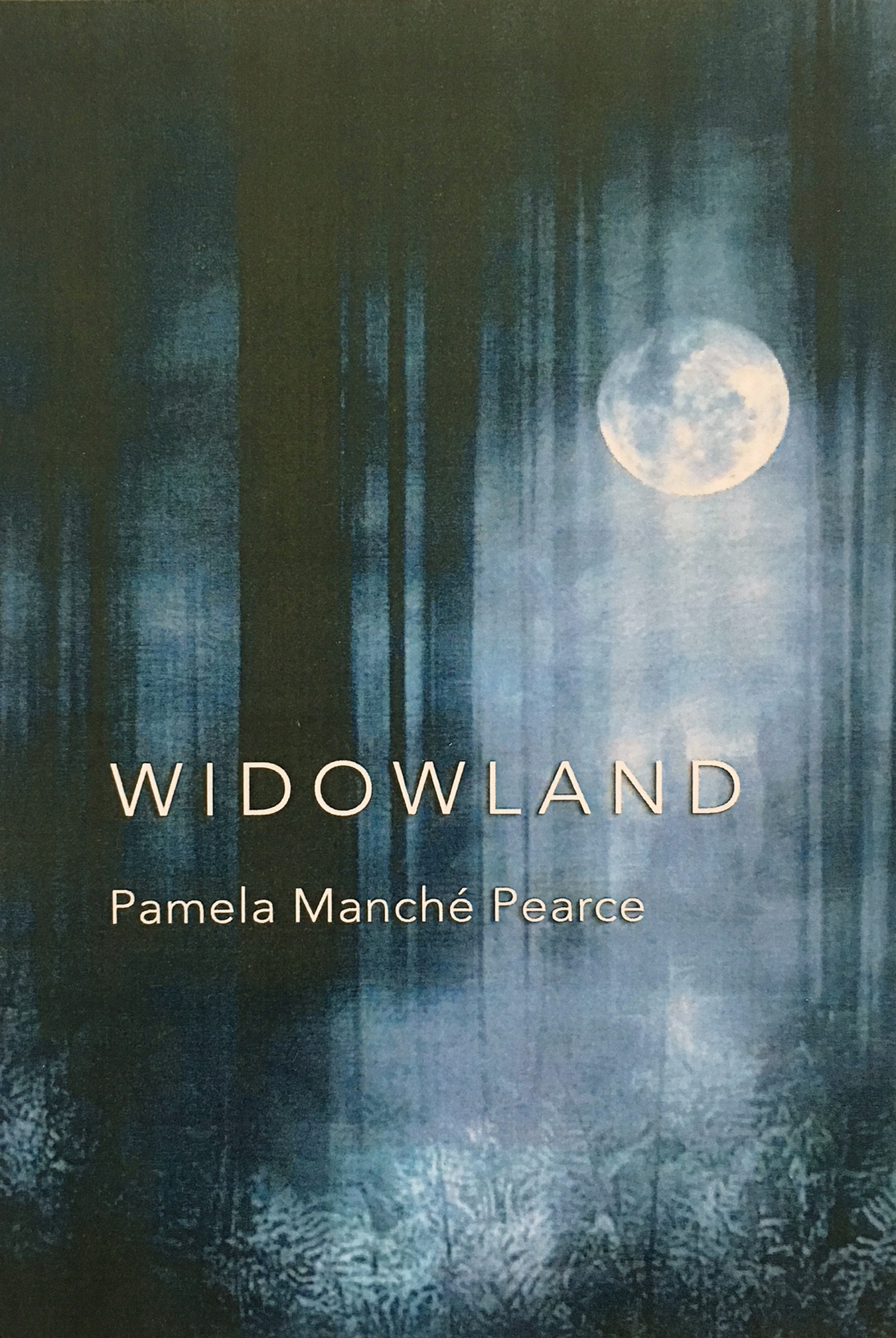 Widowland-bookcover.jpg