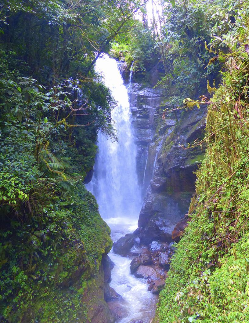 Naturaleza pura - Catarata Rio Tigre -