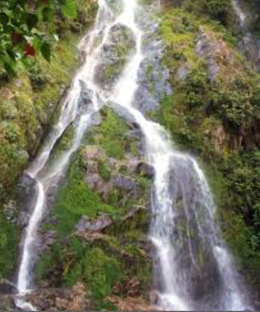Una joya escondida en la selva - 15 minutos del Fundo La Colorada -