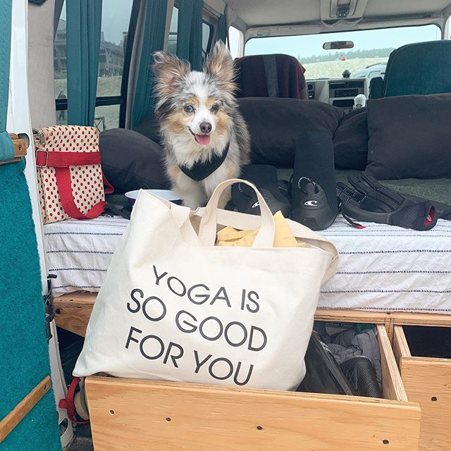 A friendly reminder #yogaissogoodforyou  Taking today off from the studio. Classes will resume tomorrow at 6am! Open studio w/Jodie