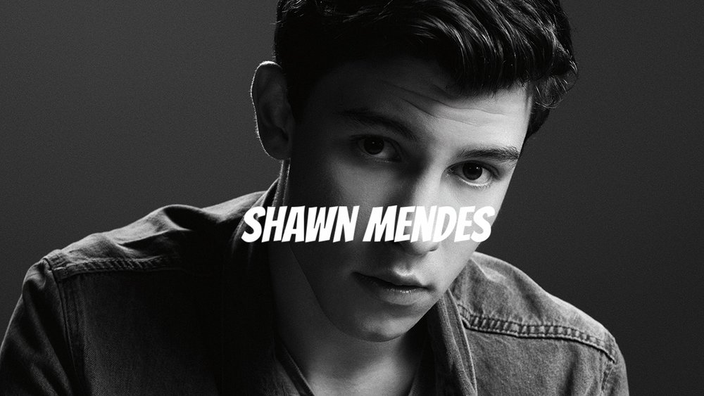 - Worked directly with Shawn's manager and AG Artists' founder Andrew Gertler to develop and execute marketing strategies for the release of Shawn's debut EP: The Shawn Mendes EP, as well as his debut album Handwritten.
