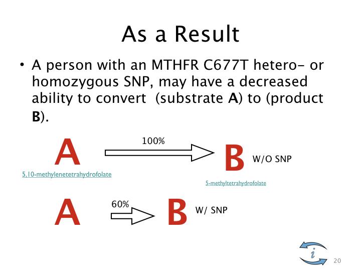 Introduction to Nutrigenomics.020.jpeg