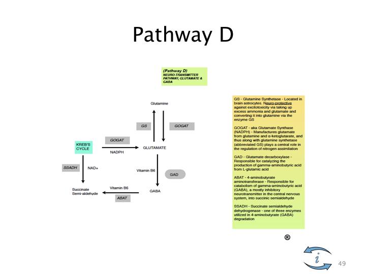 Introduction to Nutrigenomics.049.jpeg