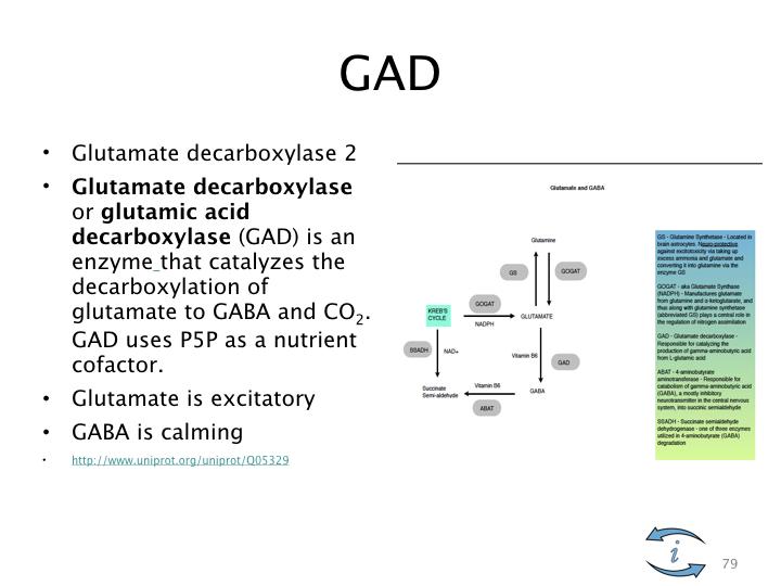 Introduction to Nutrigenomics.079.jpeg
