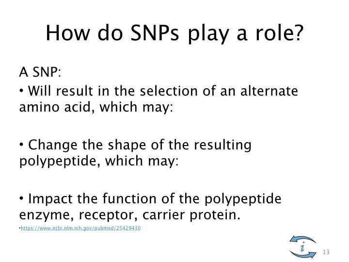SNP Intro.013.jpeg