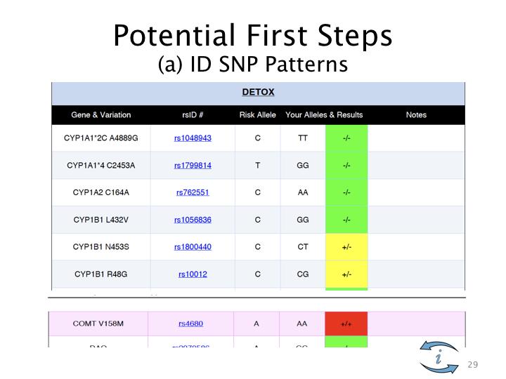 SNP Intro.029.jpeg