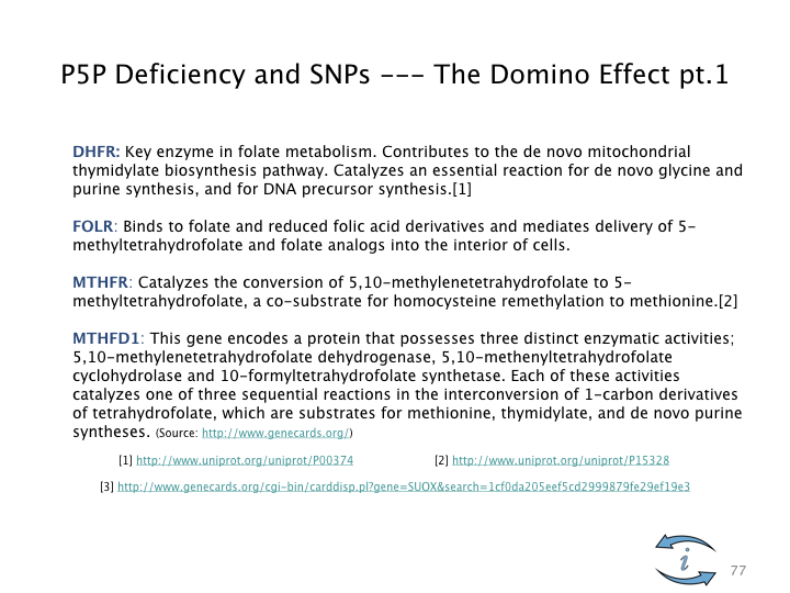 SNP Intro.077.jpeg
