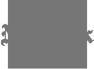 sfnt_logo_nyt.png