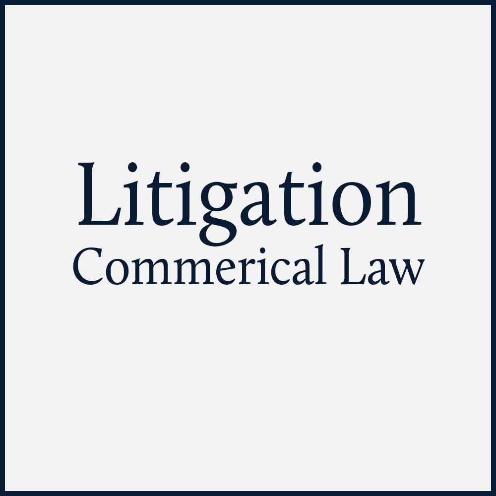 litigation-1.jpg