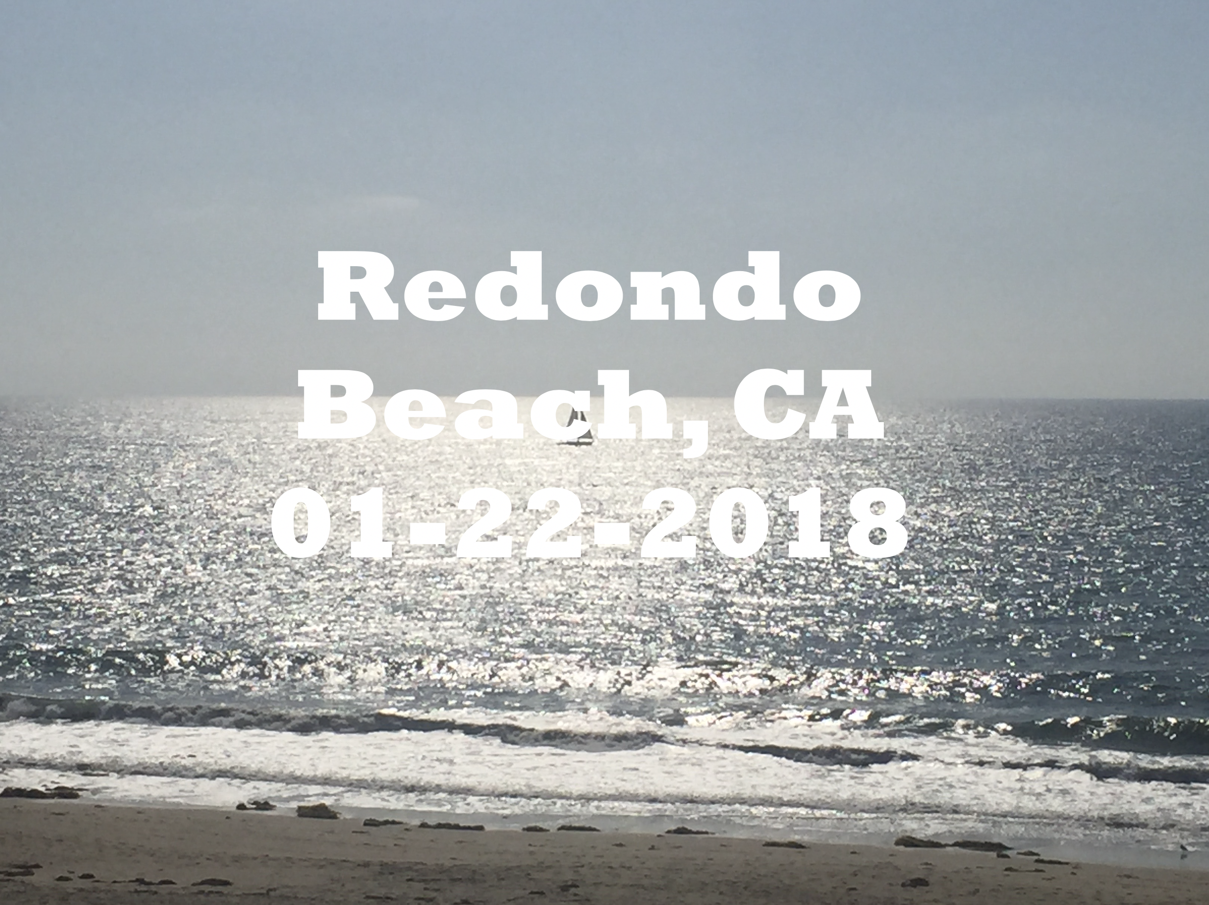 Redondo Beach with Dolphins