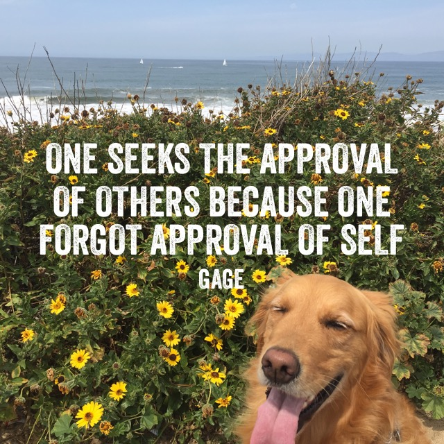 One Seeks The Approval of Others Because One Forgot Approval of Self